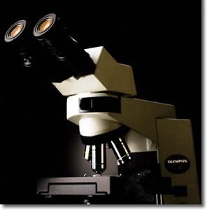 CX-41 OLYMPUS生物显微镜