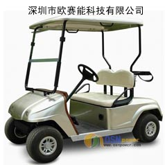 Golf Car LiFePO4 Battery-2