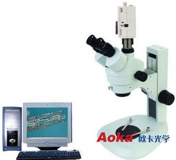 体视显微镜