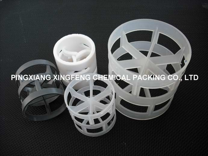 Plastic Pall Ring 2