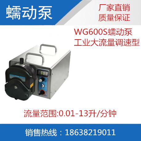 WG600S工业蠕动泵