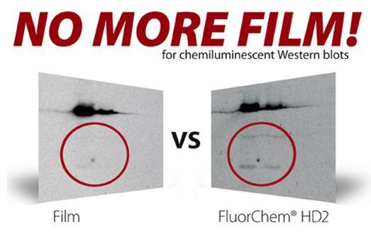 FluorChem HD2 化学发光/荧光/可见光凝胶成像分析系统