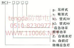 防爆照明应急两用灯    BCJ-Z125/20□      BCJ-B200/20□