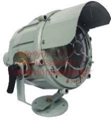 隔爆型投光灯     BTZ51250W          BTZ51250WF1