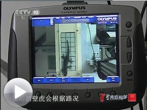 在标准机器人研发上的应_易展蛋白v标准网牛曲线壁虎仪表血清的绘制图片