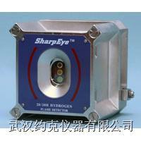 氢气火焰探测器