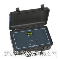 便携式氢气纯度分析仪