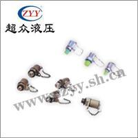 PT系列微型高压测压接头 PTS-22