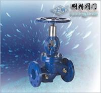 ZDSG電動調節隔膜閥