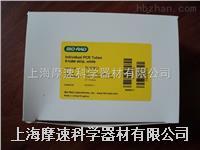 美國伯樂BIO-RAD CFX96專用八聯管TLS0851,TCS0803 美國伯樂BIO-RAD CFX96專用八聯管TLS0851,TCS0803