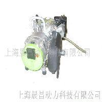 小型沼气发电机组