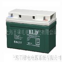 BLD胶体蓄电池(12V-65AH)