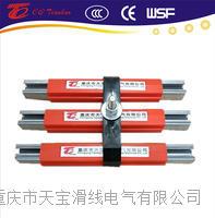进口型欧标60A镀锌钢滑触线  TBWG