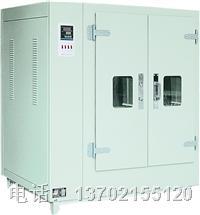 DGG-104电热鼓风干燥箱 DGG-104