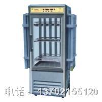 LRH-250-G光照培养箱 LRH-250-G