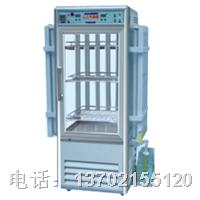 LRH-400GSI人工气候箱 LRH-400GSI