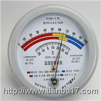TY93-1温湿度晴雨表