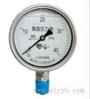 重慶川儀不銹鋼耐震膜盒壓力表 YEN-100H,YEN-100ZTH,YEN-150H,YEN-150H