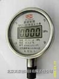 SFCY-100标准型数字压力表 SFCY-100数字压力表