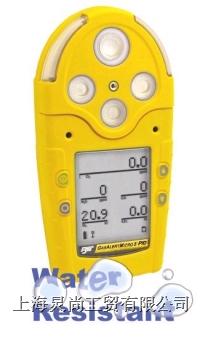 加拿大BW公司GAMIC-5五合一复合气检测仪