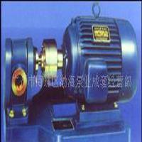 重油泵,热油泵