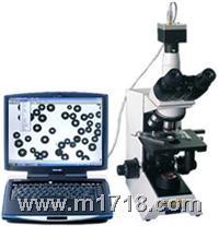 图象颗粒分析 BT-1600