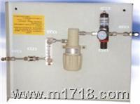 低温在线露点仪 FT-100J