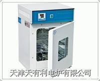 隔水式培养箱 GH300