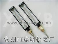 杀菌设备专用温度计,杀菌锅专用温度计,杀菌釜专用温度计 WDJ-02