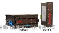 BG18-1-P1价格洼地BG18-1-P1 Omega调节器