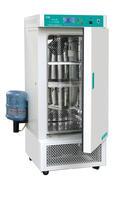 人工氣候箱 RGX-300