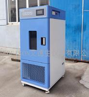 药品稳定性试验箱 EHC-250L