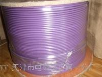 6XV1830-OEH10电缆|1对电缆 6XV1830-OEH10电缆|1对电缆