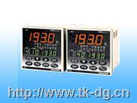 FP93可编程PID调节器 FP93