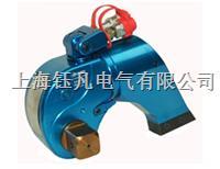 驱动式液压扭力扳手 YYD
