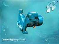 清水泵/离心泵/博洋水泵 CPM