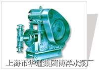 WB型电动往复泵