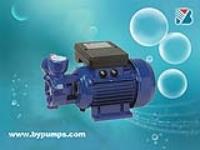 旋涡泵 W型