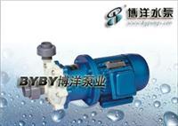 工程塑料磁力泵/塑料泵/不锈钢磁力泵/上海华通集团溥洋水泵 CQ型工程塑料磁力驱动泵(简称磁力泵)
