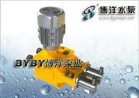 福建省计量泵/021-63540895 计量泵