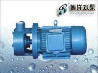 CYZ-A型自吸式离心油泵/旋涡泵/上海水泵厂021-51611222 W