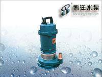 GCA多级离心泵/潜水电泵/上海水泵厂021-51611355 QDX