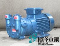 工博牌2BV水环式真空泵  2BV水环式真空泵  水环式真空泵  真空泵 工博牌2BV水环式真空泵