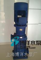 DL.(DLR)型立式多级泵,立式多级离心泵,上海工博牌立式式多级离心泵