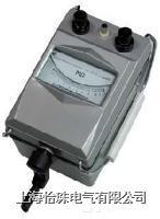 ZC11D-10 指针式绝缘电阻表(手摇式) ZC11D-10