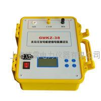 GWKZ-38水内冷发电机绝缘电阻测试仪
