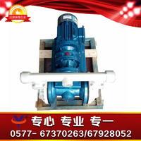 塑料电动双隔膜泵 XDBY