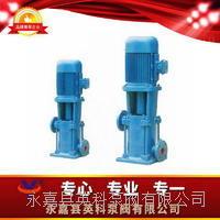 高層建筑給水泵 LG型