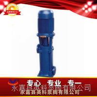 LG型高層建筑多級給水泵 LG型