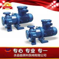 氟塑料磁力驅動泵 CQB-F型